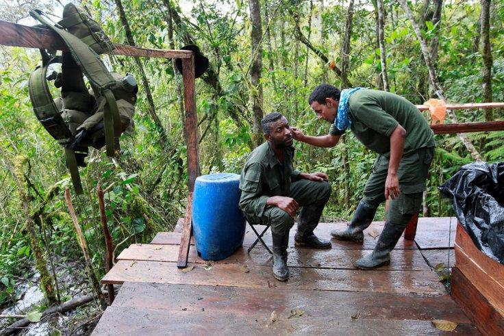 FARC14