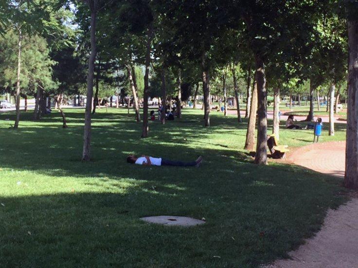 Parkta uyuyanlar.